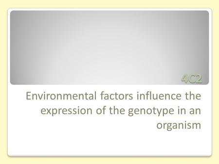 4C2 Environmental factors influence the expression of the genotype in an organism.