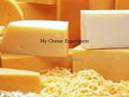 My Cheese Experiment By: Kristin Ewing. Big question My big question is will American or Swiss cheese will mold faster? I want to know this because of.