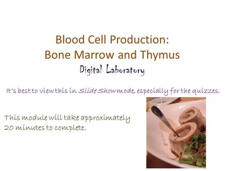 Blood Cell Production: Bone Marrow and Thymus Digital Laboratory It's best to view this in Slide Show mode, especially for the quizzes. This module will.
