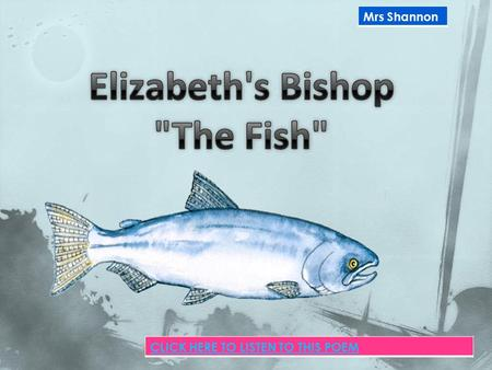 Mrs Shannon CLICK HERE TO LISTEN TO THIS POEM.  The poet has caught a 'tremendous' fish and she holds him 'beside the boat/half out of the water' so.