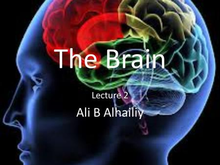 The Brain Lecture 2 Ali B Alhailiy.