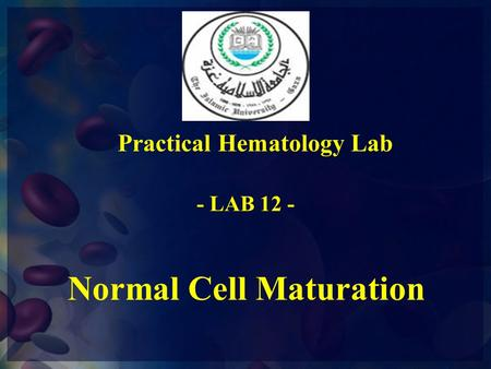 Practical Hematology Lab Normal Cell Maturation