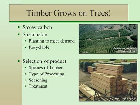 Timber Grows on Trees!  Stores carbon  Sustainable Planting to meet demand Recyclable  Selection of product Species of Timber Type of Processing Seasoning.