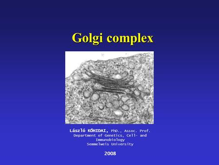 Golgi complex László KŐHIDAI, PhD., Assoc. Prof. Department of Genetics, Cell- and Immunobiology Semmelweis University 2008.