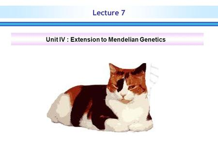 Lecture 7 Unit IV : Extension to Mendelian Genetics.