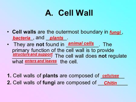 A. Cell Wall Cell walls are the outermost boundary in ____, _______, and _______. They are not found in ___________. The primary function of the cell.