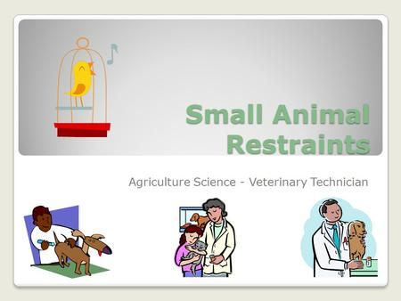 Small Animal Restraints