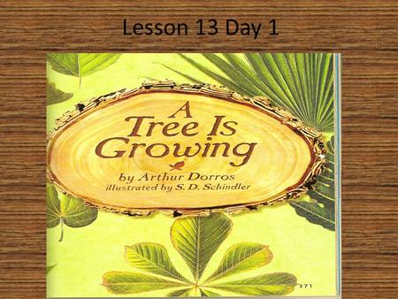 Lesson 13 Day 1. Question of the Day What does your body need in order to stay healthy and keep growing? In order to stay healthy and keep growing, I.