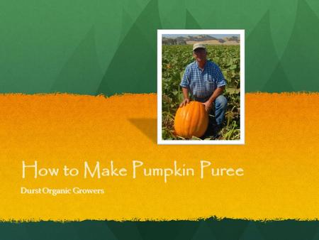 How to Make Pumpkin Puree Durst Organic Growers. Selecting and storing fresh Pumpkin For cooking, select the small 'pie' types, such as Sugar Pie, or.