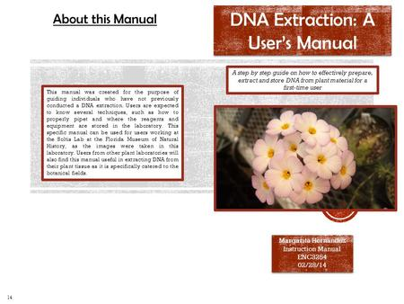 DNA Extraction: A User's Manual Margarita Hernandez Instruction Manual ENC3254 02/28/14 Margarita Hernandez Instruction Manual ENC3254 02/28/14 A step.