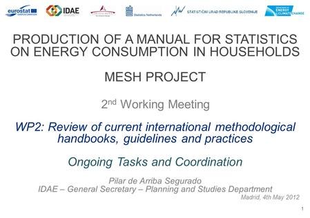 1 PRODUCTION OF A MANUAL FOR STATISTICS ON ENERGY CONSUMPTION IN HOUSEHOLDS MESH PROJECT 2 nd Working Meeting Madrid, 4th May 2012 WP2: Review of current.