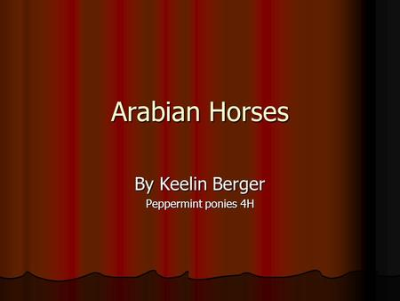 Arabian Horses By Keelin Berger Peppermint ponies 4H.