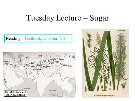 Tuesday Lecture – Sugar Reading: Textbook, Chapter 7, 8.