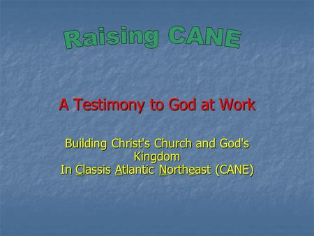A Testimony to God at Work Building Christ's Church and God's Kingdom In Classis Atlantic Northeast (CANE)