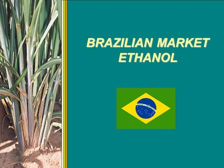 BRAZILIAN MARKET ETHANOL. ETHANOL FUEL OF THE FUTURE (Henry Ford - 1906) Ethanol first became popular as a fuel with the model T. (above) Henry Ford mixed.