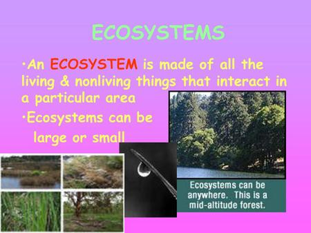 ECOSYSTEMS An ECOSYSTEM is made of all the living & nonliving things that interact in a particular area Ecosystems can be large or small.