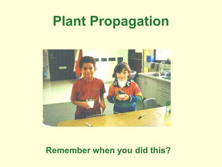 Plant Propagation Remember when you did this?. Now people do this.