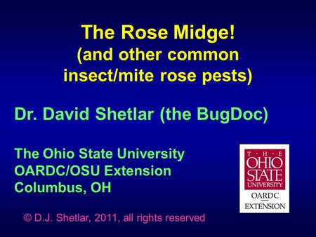 Dr. David Shetlar (the BugDoc) The Ohio State University OARDC/OSU Extension Columbus, OH The Rose Midge! (and other common insect/mite rose pests) © D.J.