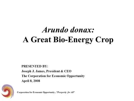 Arundo donax: A Great Bio-Energy Crop PRESENTED BY: Joseph J. James, President & CEO The Corporation for Economic Opportunity April 8, 2008 Corporation.