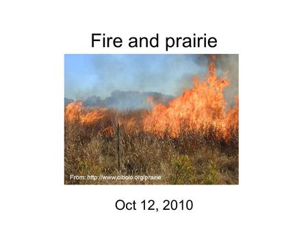 Fire and prairie Oct 12, 2010 From: