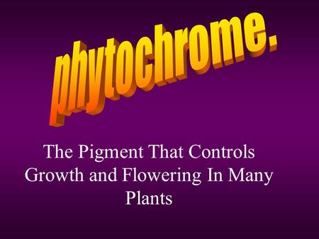 The Pigment That Controls Growth and Flowering In Many Plants.