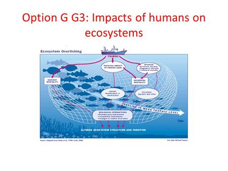 Option G G3: Impacts of humans on ecosystems. Calculate the Simpson diversity index for two local communities. See Handout.