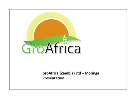 GroAfrica (Zambia) Ltd – Moringa Presentation. The Moringa Tree Moringa oleifera 03 These leaves could save millions of lives.