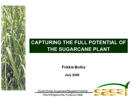 South African Sugarcane Research Institute Mount Edgecombe, KwaZulu-Natal CAPTURING THE FULL POTENTIAL OF THE SUGARCANE PLANT Frikkie Botha July 2006.