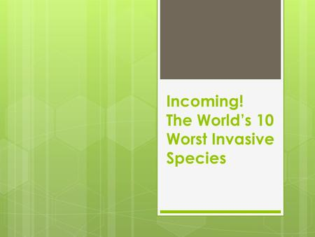 Incoming! The World's 10 Worst Invasive Species. KUDZU  ORIGIN – Japan & Southeast China  New Location(s) – Southern USA; New Jersey; Oregon  How it.