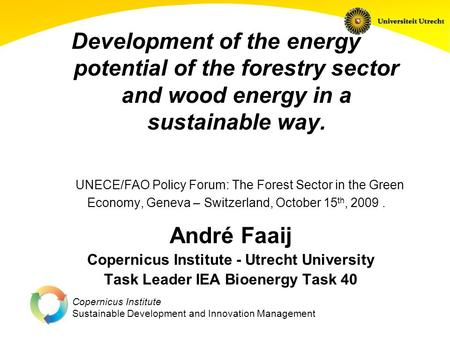 Copernicus Institute Sustainable Development and Innovation Management Development of the energy potential of the forestry sector and wood energy in a.