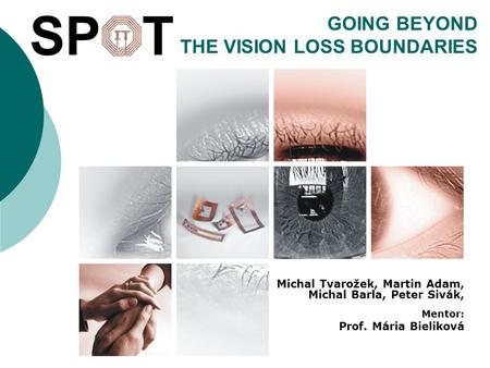 GOING BEYOND THE VISION LOSS BOUNDARIES Michal Tvarožek, Martin Adam, Michal Barla, Peter Sivák, Mentor: Prof. Mária Bieliková.