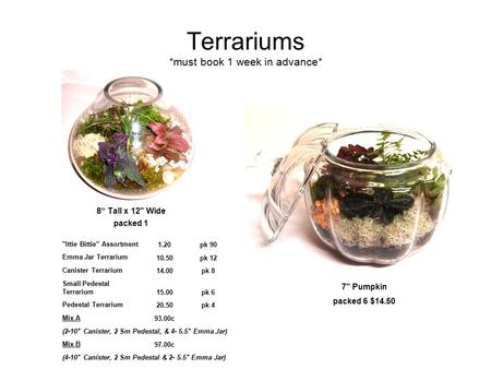 "Terrariums *must book 1 week in advance* 8"" Tall x 12 Wide packed 1 7 Pumpkin packed 6 $14.50 Ittie Bittie Assortment1.20pk 90 Emma Jar Terrarium 10.50pk."