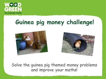 Guinea pig money challenge! Solve the guinea pig themed money problems and improve your maths!