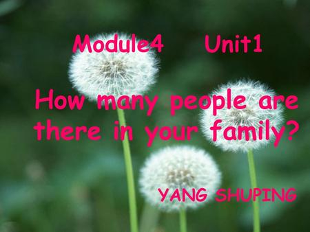 Module4 Unit1 How many people are there in your family? YANG SHUPING.