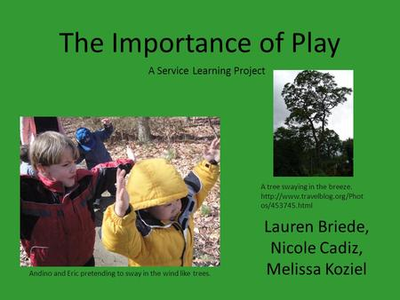 The Importance of Play Lauren Briede, Nicole Cadiz, Melissa Koziel A Service Learning Project Andino and Eric pretending to sway in the wind like trees.