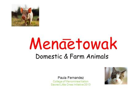 Menaetowak Domestic & Farm Animals Paula Fernandez College of Menominee Nation Sacred Little Ones Initiative 2013.