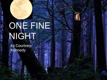 ONE FINE NIGHT by Courtney Kennedy. One fine night a megabat traveled through a great rainforest. When he reached the other side he was very hungry.