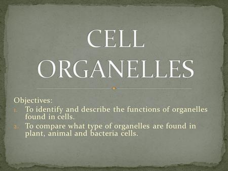 Objectives: 1. To identify and describe the functions of organelles found in cells. 2. To compare what type of organelles are found in plant, animal and.