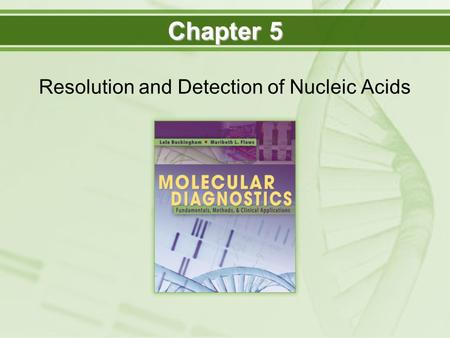 Resolution and Detection of Nucleic Acids