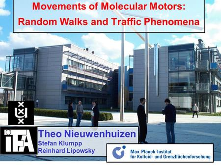 Movements of Molecular Motors: Random Walks and Traffic Phenomena Theo Nieuwenhuizen Stefan Klumpp Reinhard Lipowsky.