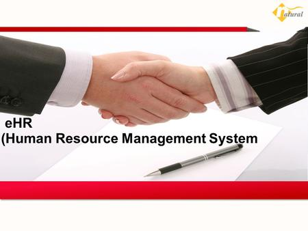 EHR (Human Resource Management System 24 August 2013.