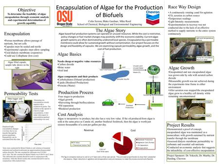 Production Process Four stages to production Algal growth Harvesting through bioflocculation Oil separation Biodiesel production Encapsulation of Algae.