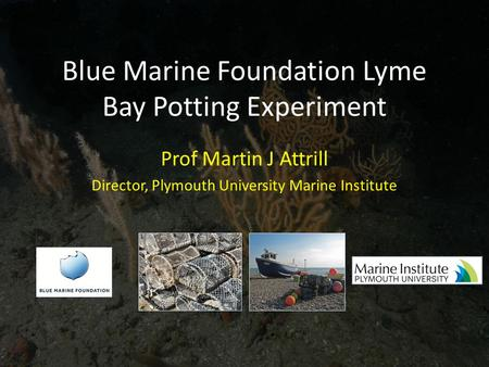 Blue Marine Foundation Lyme Bay Potting Experiment Prof Martin J Attrill Director, Plymouth University Marine Institute.