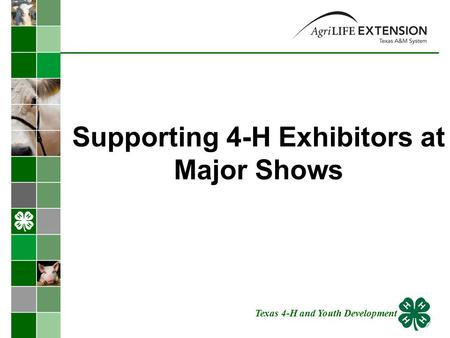 Supporting 4-H Exhibitors at Major Shows Texas 4-H and Youth Development.