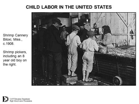 UAW Education Department High School Labor Presentation CHILD LABOR IN THE UNITED STATES Shrimp Cannery Biloxi, Miss., c.1908. Shrimp pickers, including.
