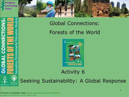 1 Global Connections: Forests of the World Activity 6 Seeking Sustainability: A Global Response.