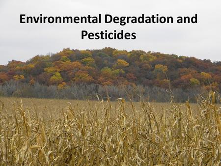 Environmental Degradation and Pesticides. Outline Importance of our environment What is environmental degradation? Water Air Harm or loss of beneficial.
