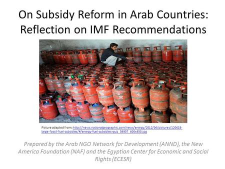 On Subsidy Reform in Arab Countries: Reflection on IMF Recommendations Prepared by the Arab NGO Network for Development (ANND), the New America Foundation.