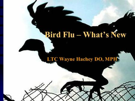 Bird Flu – What's New LTC Wayne Hachey DO, MPH Reuters.