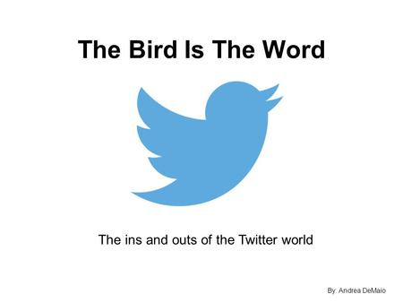 The Bird Is The Word The ins and outs of the Twitter world By: Andrea DeMaio.